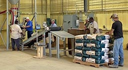 Bag Filling, Sewing, Conveying, and Palletizing