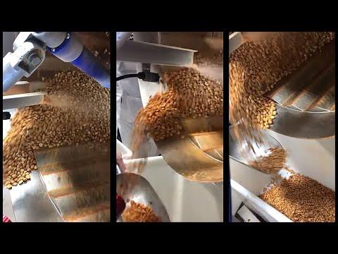Peanut Coating Machine Uses Electrostatics for up to 45% Seasoning Reduction