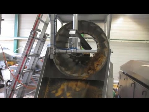 Seasoning Chips Using an Electrostatic Coating Process