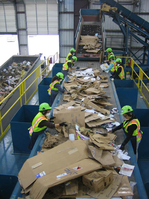 cardboard picking line at materials recovery facility