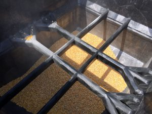 corn inside buckhorn probox bulk container
