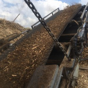 shredded ground up wood shipping pallets conveyor belt