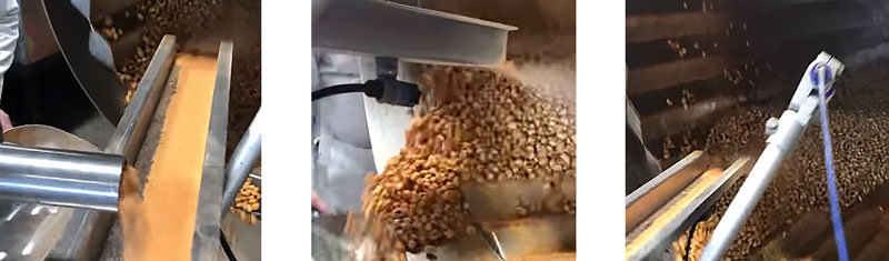 Peanut Coating Machine Uses Electrostatics to Add Seasoning