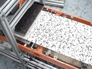 adding chocolate chips toppings evenly to food on conveyor with feeder spreader