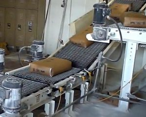 bag palletizing conveyors to move filled valve bags