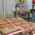 bag palletizing robot picks up and palletizes 50lb bags of creep cattle feed