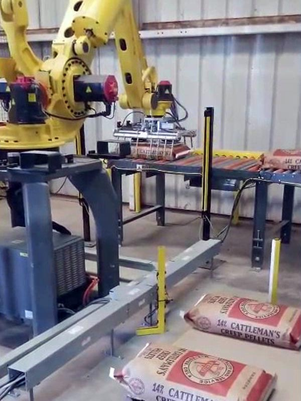 bag palletizing robot picks up 50lb bags of creep cattle feed pellets from pick conveyor
